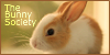 :iconthe-bunny-society: