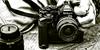 :iconthe-camera-crew: