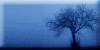 :iconthe-magic-of-nature: