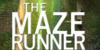 :iconthe-maze-runner-fans: