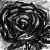 :iconthe-rain-of-roses: