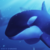 :icontheaceorca: