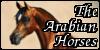 :iconthearabianhorses:
