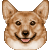 :iconthecorgiprincess: