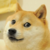 :iconthedogewatches: