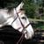 :iconthegrayhorse: