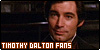 :icontimothydalton-fans: