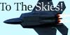 :iconto-the-skies:
