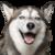 :icontofikthewolf: