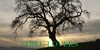 :icontree-lovers: