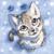 :iconts-cat:
