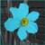 :iconturquoise-narcissus: