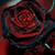 :icontuxedo-mask-rose: