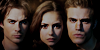 :icontvd-network: