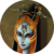 :icontwilit-beauty-midna: