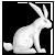 :icontwistedwhiterabbit: