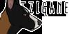 :icontzigane-registry: