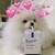 :iconulzzang-adopts: