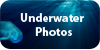 :iconunderwater-photos: