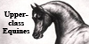 :iconupperclass-equines: