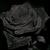 :iconvano666: