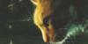 :iconwarrior-catting: