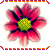 :iconwaterlily2544: