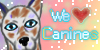 :iconwelovecanines: