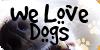 :iconwelovedogs: