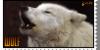 :iconwelovewolfsart: