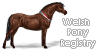 :iconwelsh-pony-registry: