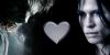 :iconwere-vamp-love: