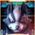 :iconwesker-wolf: