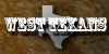 :iconwest-texans: