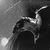 :iconwhitebaltowolf: