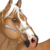 :iconwhstables: