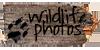 :iconwildlife-photos: