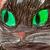 :iconwildwarriorcat11: