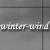 :iconwinter-wind: