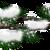 :iconwinterbranch-3plz: