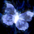 :iconwinters-butterfly: