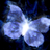 :iconwinters-butterfly2:
