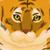 :iconwizardcat3: