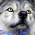 :iconwolf-lycanthrope: