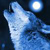 :iconwolf-spirits-united: