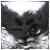 :iconwolfacus:
