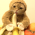 :iconwolfie415: