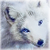 :iconwolfienix: