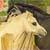 :iconwolfies-horses: