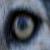 :iconwolfinout: